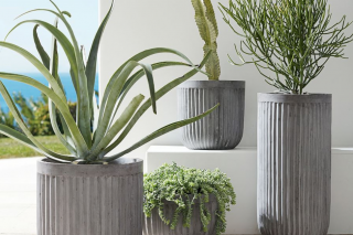 Pottery Barn Fluted Concrete Planter